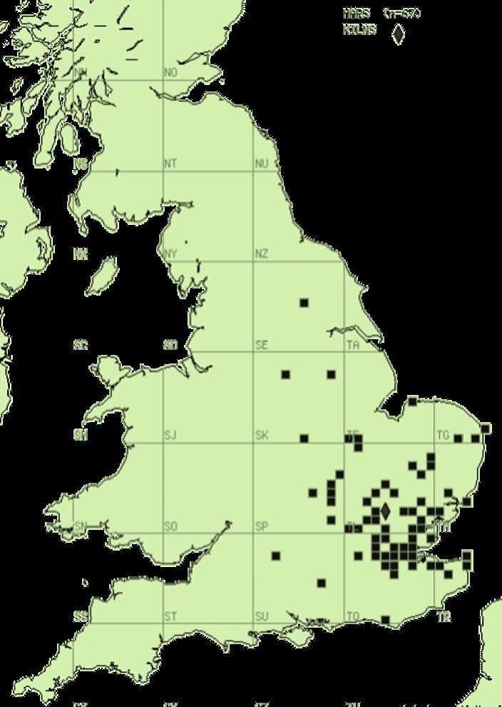 hadham ware map